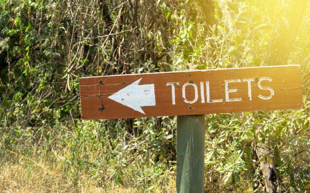 WC chimico portatile – La guida completa per trovare la migliore toilette portatile da campeggio